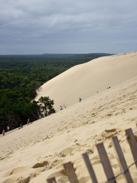 descendre la dune du pilat