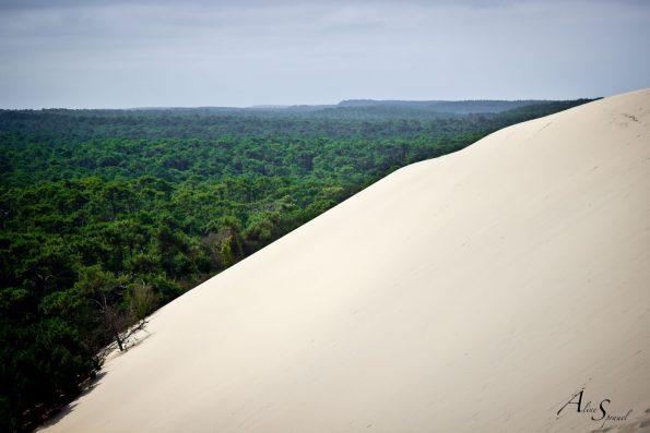 sable sur la dune du pilat