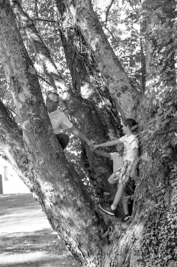complicité dans un arbre