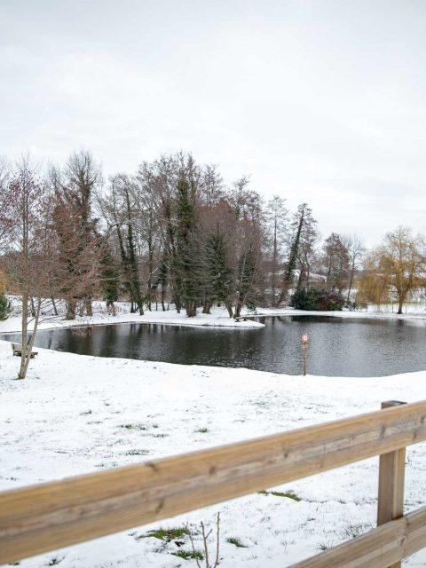 étang sous la neige