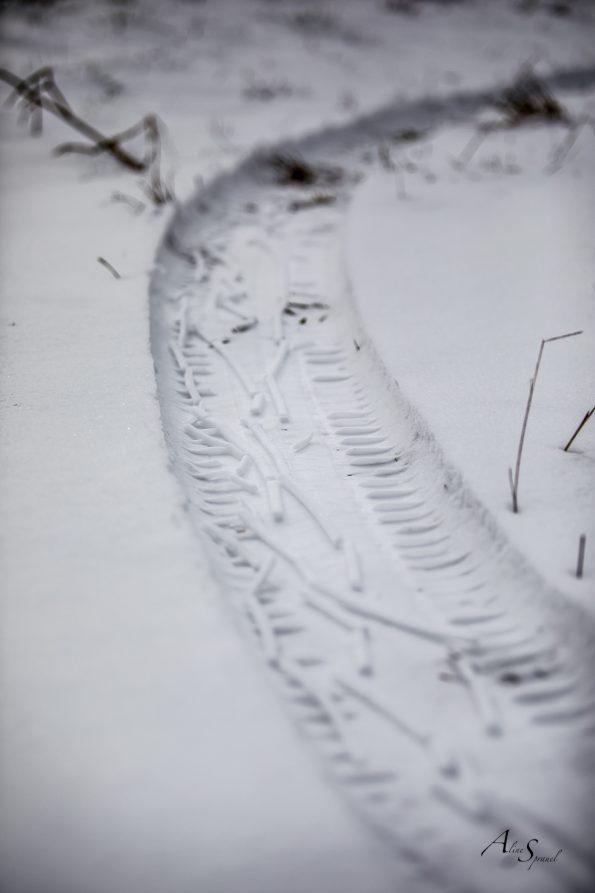 traces de roues