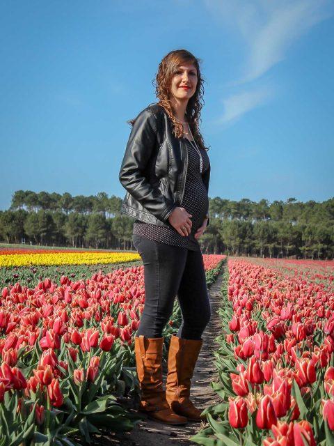 grossesse champs de tulipes