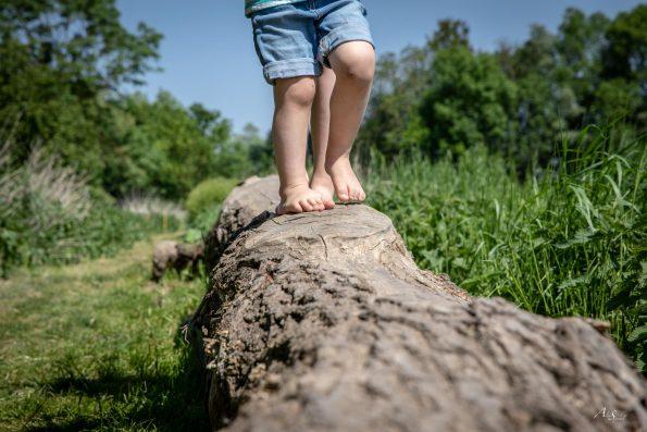 pieds nus sur un tronc
