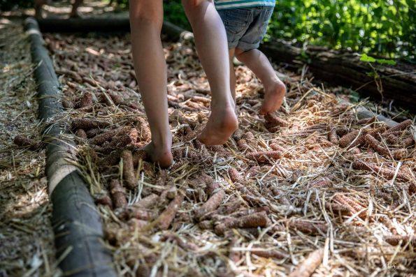 pieds nus mais