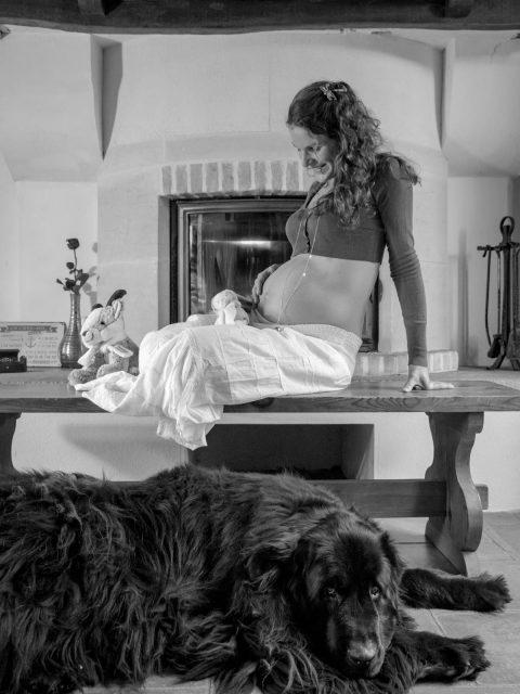 future maman chien