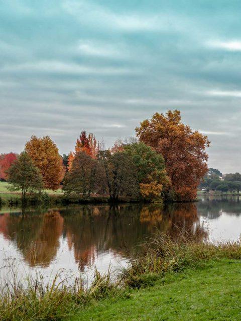 automne lac