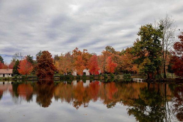 lac automne landes