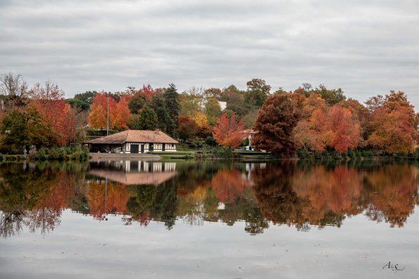lac reflet automne