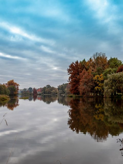 lac automne
