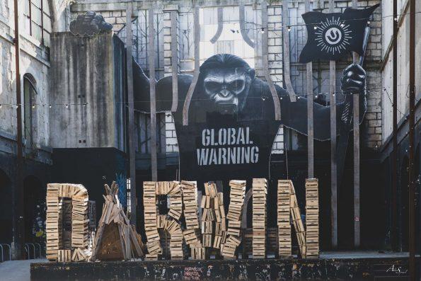 darwin bordeaux