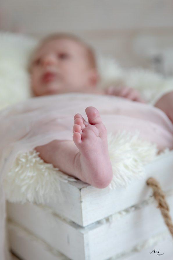 pied bebe