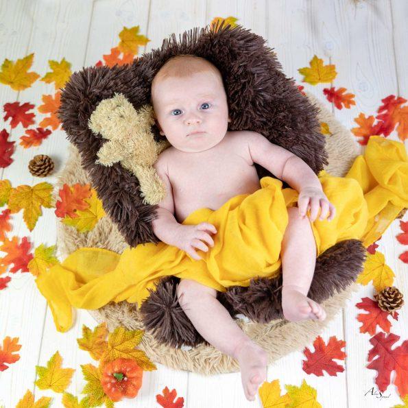 mise en scene bebe automne