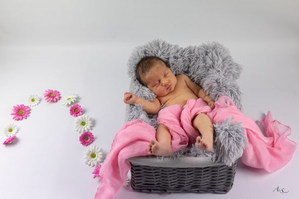 bebe panier