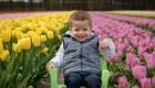 enfant-tulipes