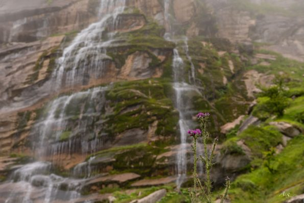 cascade-brume-pays-basque