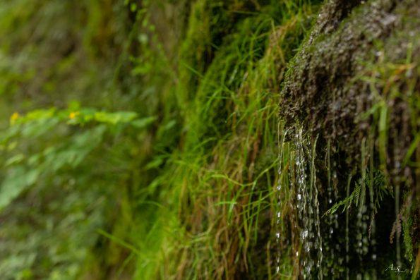 liseret-eau-cascade