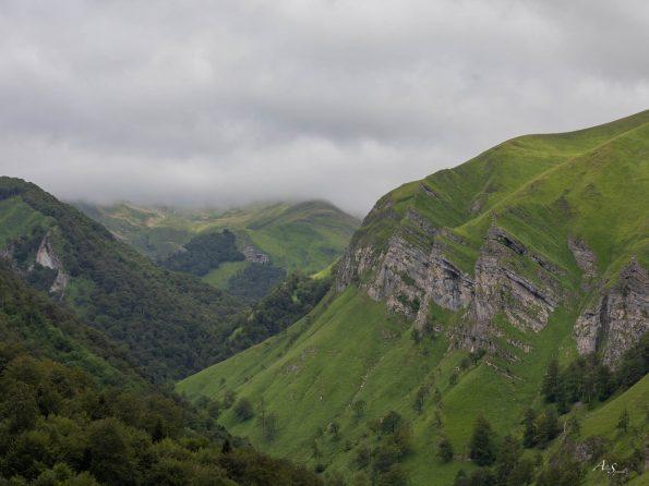 montage-verte-pays-basque