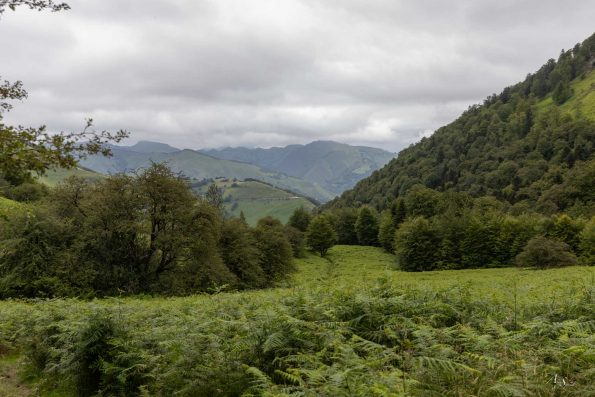 montagne-pays-basque