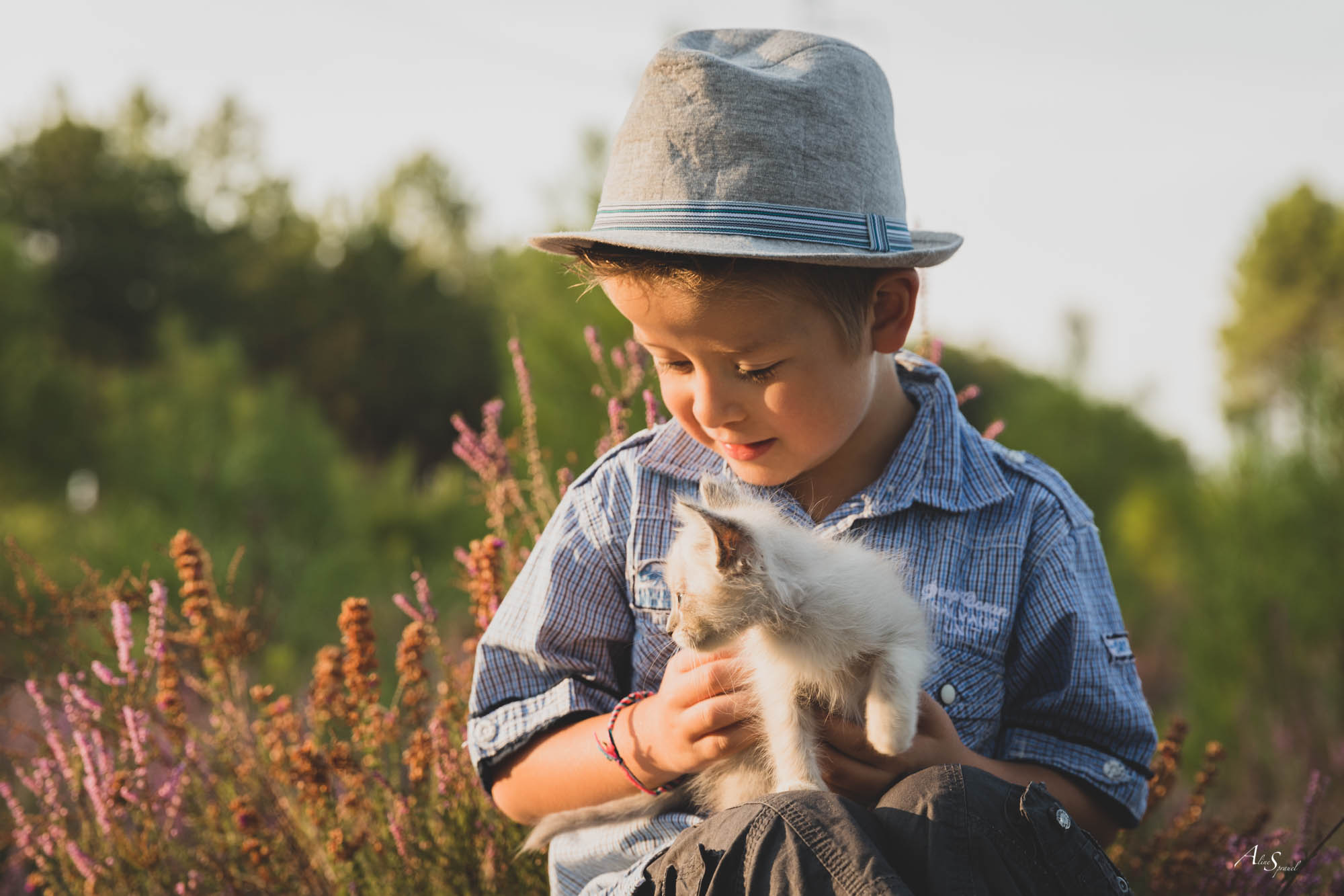 boy-and-kitten