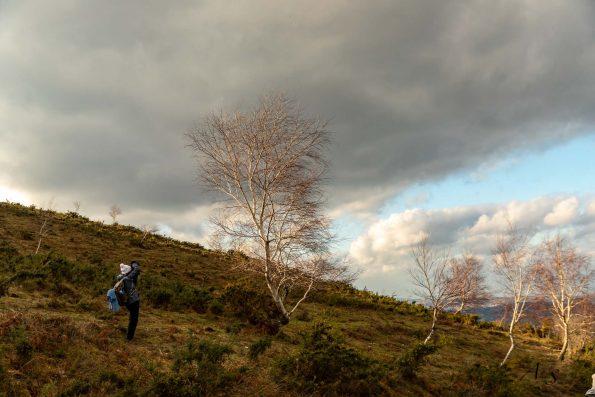 Alex-nature-photos