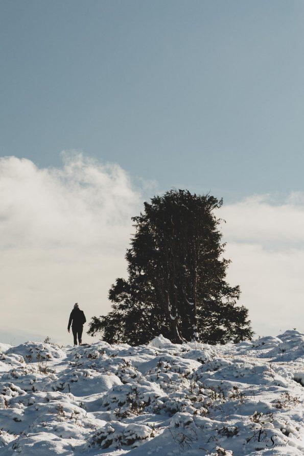 randonnee-neige