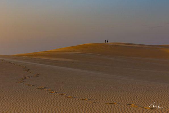 desert dune du pilat
