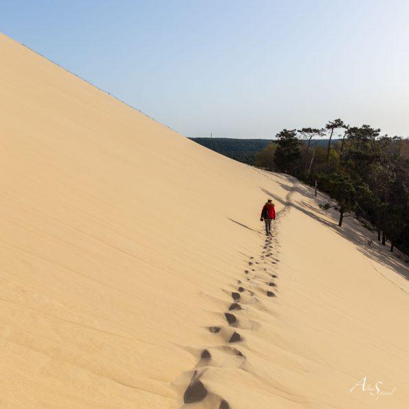 marcher sable dune