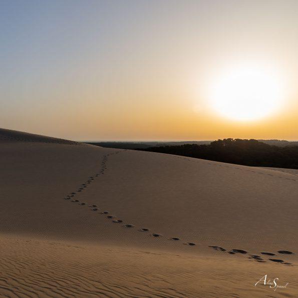 pas lever soleil dune