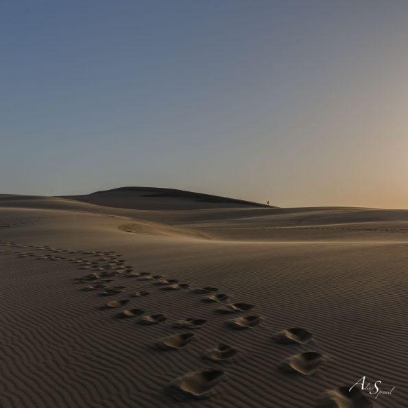 pas sable dune du pilat