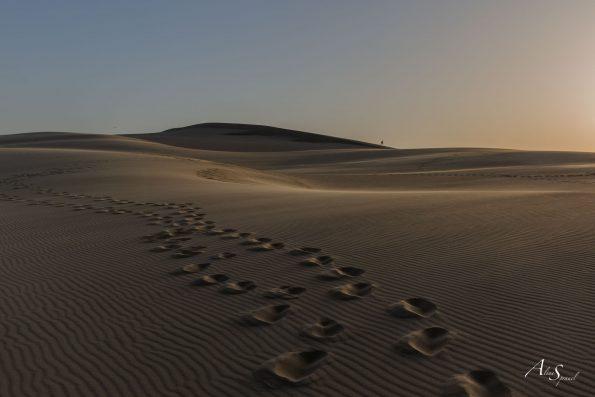 pas sable dune pilat