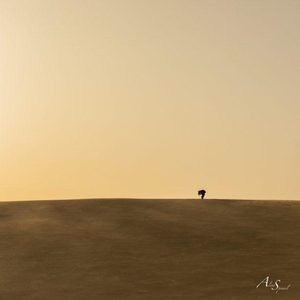 photographe dune