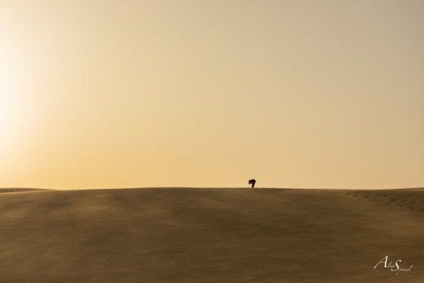 photographe dune du pilat