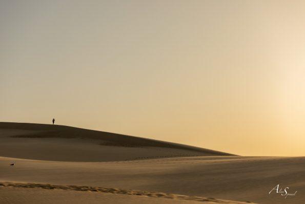 sable sommet dune du pilat