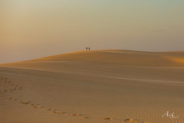 sable sommet dune pilat