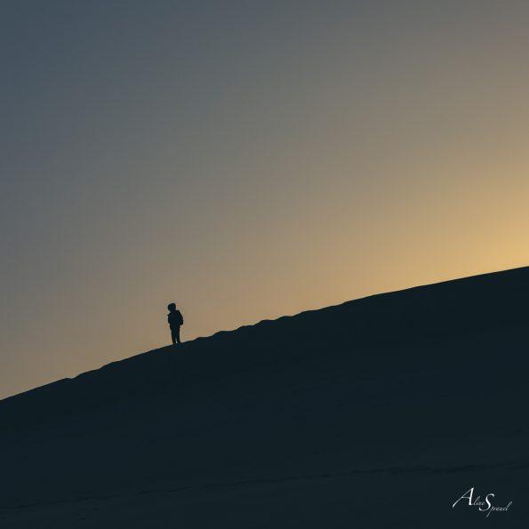 silhouette dune