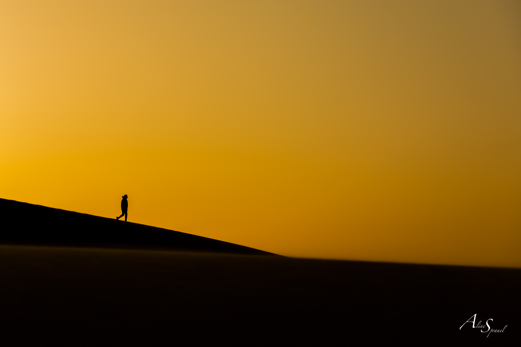 silhouette dune du pilat