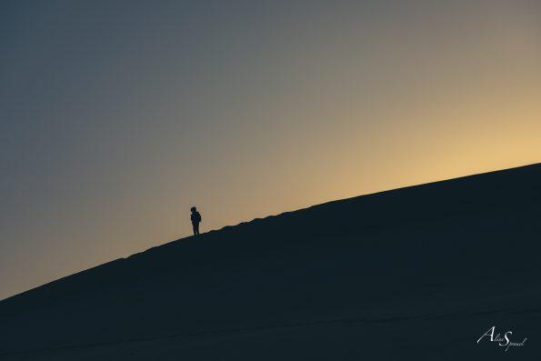 silhouette dune pilat