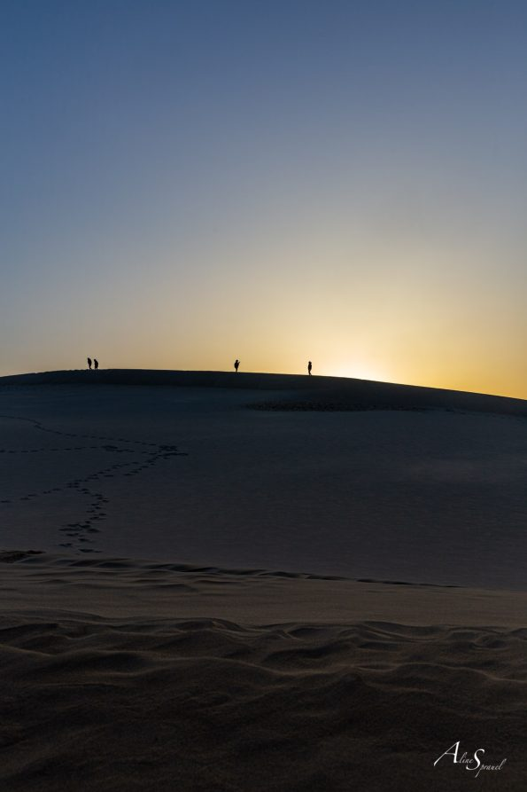 silhouettes dune pilat